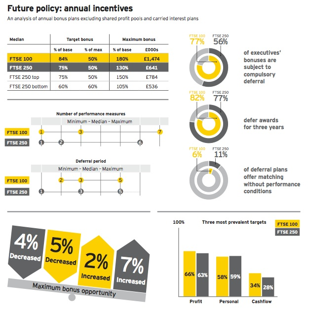 EYReport-FuturePayPolicy-2013