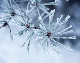 Winter-Thinkstock-2013