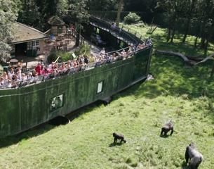 Port-Lympne-Zoo-2014