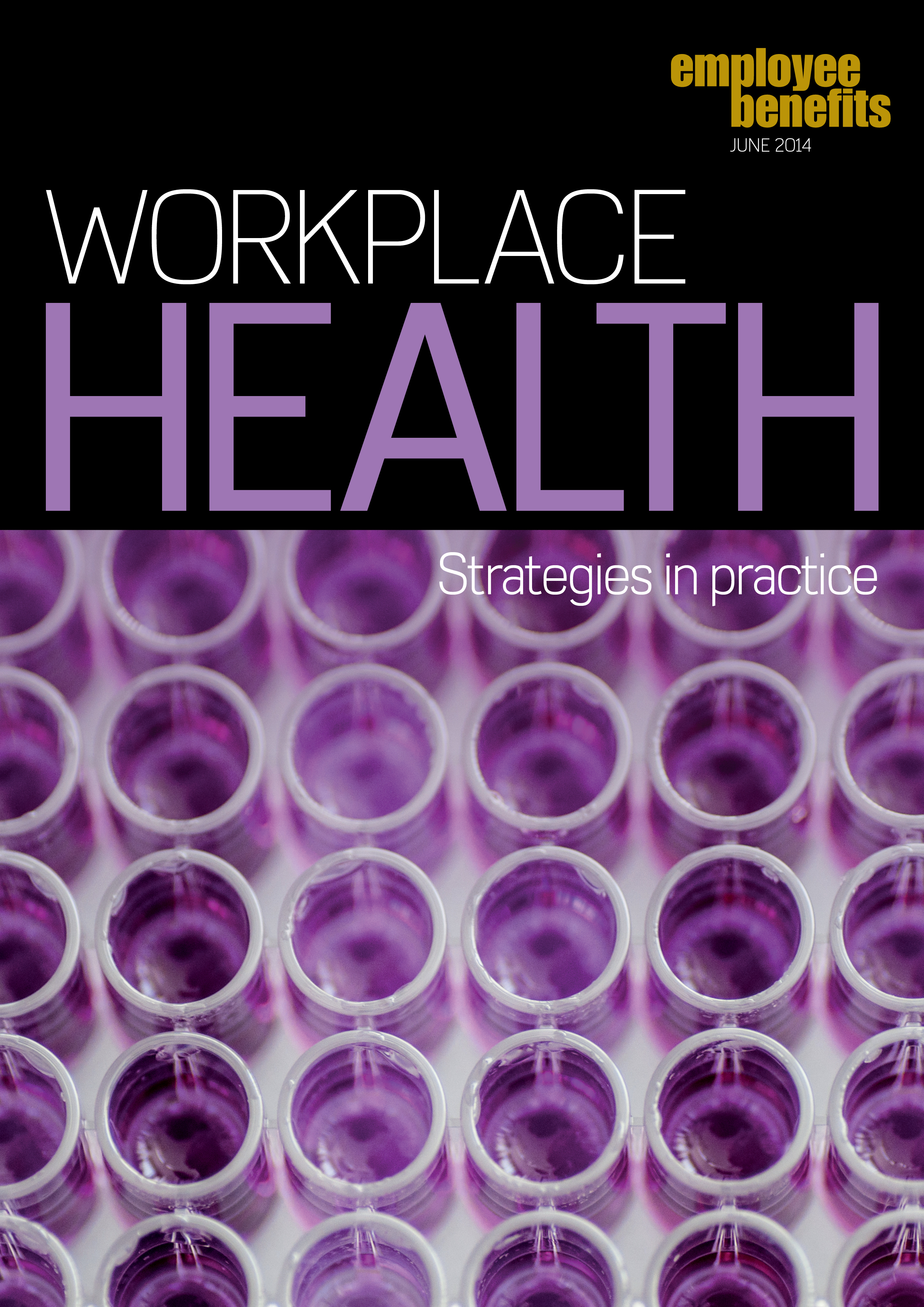WorkplaceHealth-StrategiesInPractice-2014.jpg