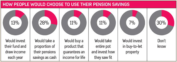 How people would choose to use their pension savings