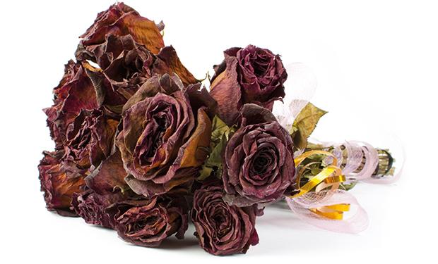 Total reward dead flowers