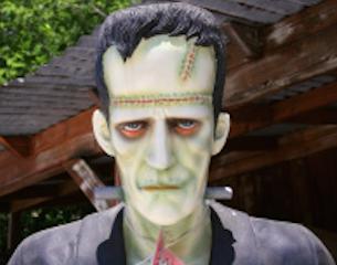 Frankenstein-SFTW-2015