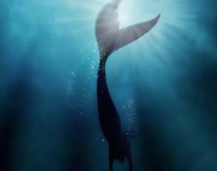 Mermaids-SFTW-2015