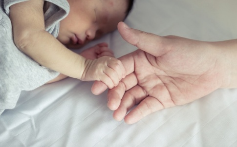 Baby-and-parent-holding-hands
