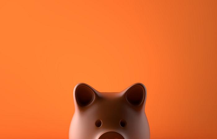 lisa savings