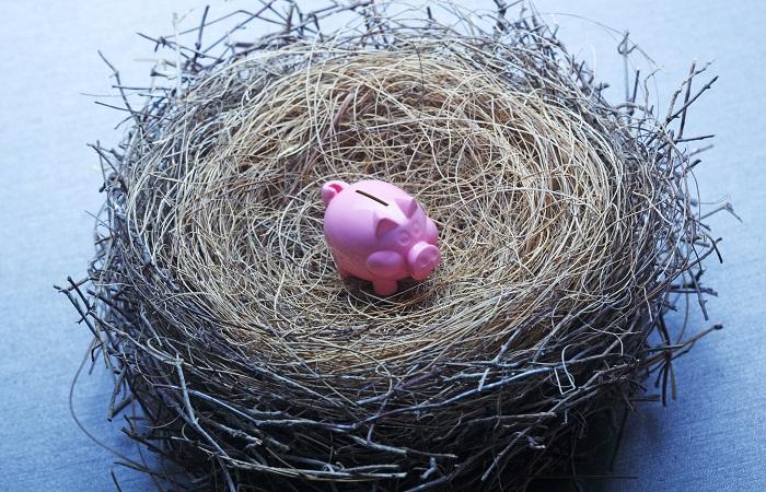 Pension nest, piggy bank