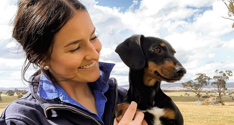 Archie the sausage dogs chases sheepdog career ambitions